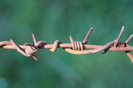 Barbed wire Stock Photo - 10506568