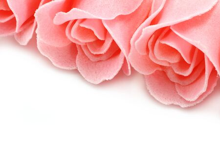 Pink soap roses close-up on a white background  photo