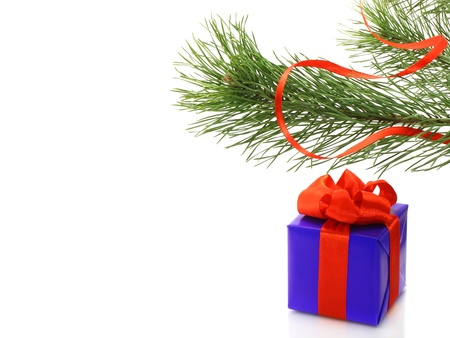 Fir tree branch with present box on white background Stock Photo - 11308227