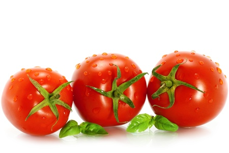 Wet tomatoes with greenery on white background