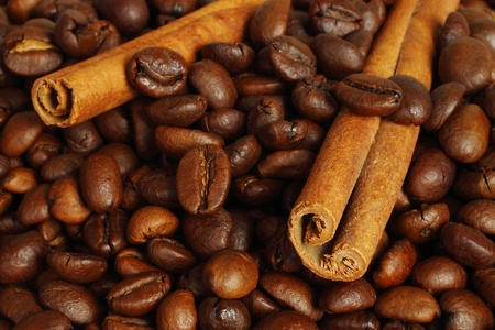 Coffee beans and cinnamon sticks close-up  photo