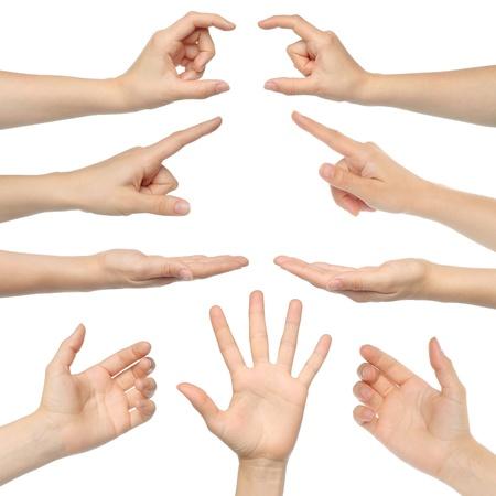 manos abiertas: Collage de las manos de la mujer sobre fondo blanco