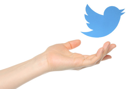twitter: KIEV, UKRAINE - JANUARY 05, 2015: Hand with Twitter bird printed on paper flying away.Twitter is an online social networking service that enables users to send and read short messages. Editorial