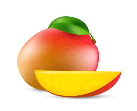 Mango fruit - exotic fruits collection, realistic design vector illustration close-up