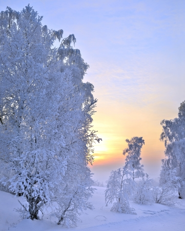 Winter sunset landscape  Magical  colors of winter evenings