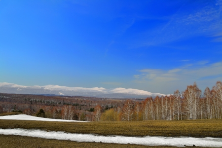 ridgeline: Bright spring panorama  The snow melts on the meadow, swollen buds on the trees   Nature wakes up  On the background is the ridgeline of Kuznetsk Alatau mountains