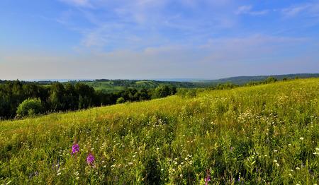 bounty: Brillo, esplendor colorido y la calma de la naturaleza salvaje. Ondas verdes de las colinas, prados en flor con el olor de la miel, bosques sombríos. Belleza, tranquilidad e increíble generosidad de la naturaleza Foto de archivo