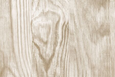 old backgrounds: Wooden Grunge Background. Striped Timber Desk Close Up. Wood of Coniferous Trees Texture.  Grainy structure.