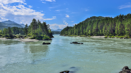 Amazing turquoise mountain river with rapids among wooded shores - sunny summer landscape