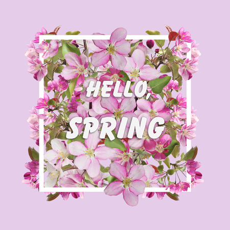 Floral Spring Design with Cherry Blossom Flowers in the white rectangular frame on a pink background and text Hello spring