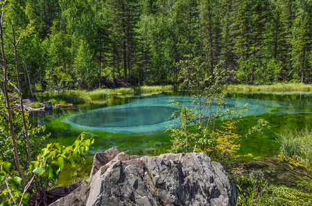 Amazing blue geyser lake in the mountains of Altai, Russia. Unique turquoise lake with crystal clear water and oval circular divorces, which change because geyser lifts blue clay from the bottom Фото со стока