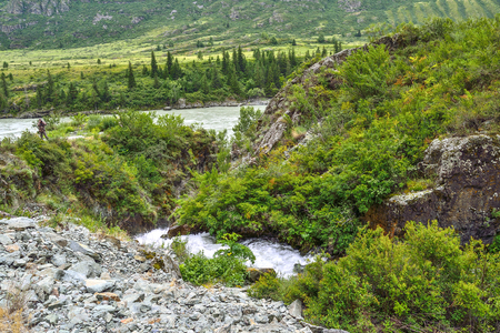 Mountain creek under cliffs among boulders flowing into the Katun River  in Altai mountains, Russia - beautiful summer landscape. Beauty of wild nature