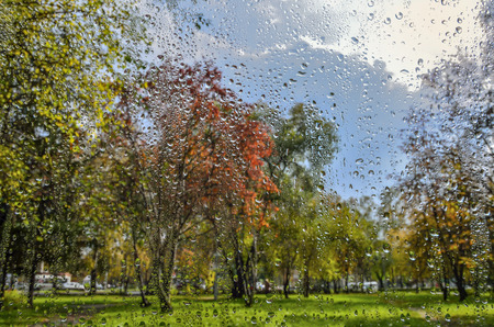 Bright, colorful autumn blurred landscape in city park with wet foliage after rain through  wet window glass with raindrops. Rainy autumn weather and multicolored fall - background for  autumn weather forecast