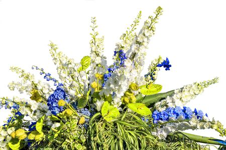 Beautiful floral composition from white and blue flowers and variegated leaves of decorative plants. Gorgeous bouquet from different flowers and plants - stylish floral work isolated on white