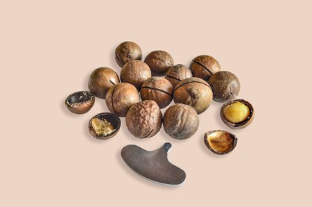 Whole and shelled macadamia nuts and metal key for opening nutshell on beige background. Nutritious, tasty and healthy snack. Macadamia is the most expensive nut in the world with hardest shell