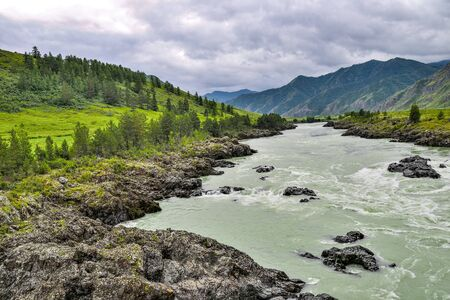 Summer landscape of fast mountain river Katun with Teldykpen rapids near village Oroktoy, Altai mountains, Russia. Narrowest and deepest place of siberian mountain river on valley among rocks