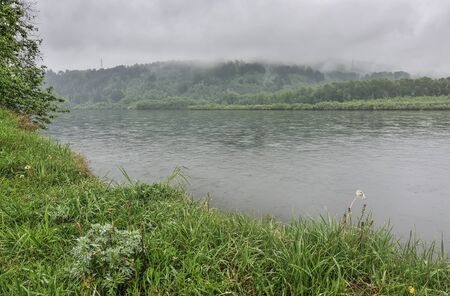 White fog over the forest on hill and river in summer morning. Moody landscape on the riverside. Green grass with drops of dew. Freshness and calmness of nature Zdjęcie Seryjne