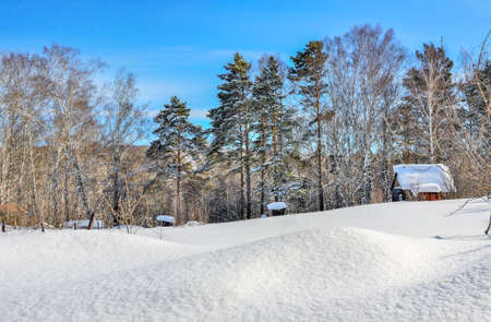 Several small wooden houses covered with snow on the edge of birch and pine forest in mountains at bright winter sunny day. Winter walk during the holidays vocation. Snowdrifts at foreground