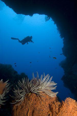 enters: SCUBA Diver enters an underwater cave
