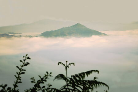 alpine zone: Sea of clouds at dawn over the Marsyangdi river valley beneath Bandipur town as seen from Tundikhel field  Tanahu district-Gandaki zone-Nepal