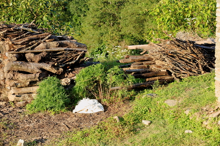 brushwood: Heap of firewood stacks piled on the ground marking the limit of an orchard  bounded by a green hedge in Dhampus village on the trekking route surrounding the foothills of the Annapurnas range in the Himalayas  Kaski district-Gandaki zone-Nepal