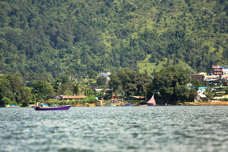 rowboats: POKHARA, NEPAL - OCTOBER Purple colored wooden rowboats and sailboats navigate at the foot of Ananda hill on the shore of the 4.43 km2-784 ms.high Phewa tal-lake on October 12, 2012 in Pokhara-Kaski district-Gandaki zone-Nepal.
