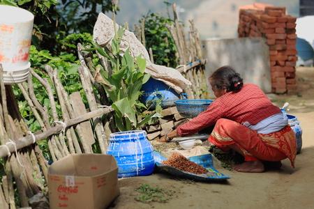 agachado: Namo Buda, Nepal - Octubre 16,2012: Mujer mayor procesa soja en el patio trasero de la parte superior de la AD-1978 VVKhenchen Thrangu Rinpoche fund� Thrangu Tashi Yangtse monasterio budista, el 16 de octubre de 2012. Namo Buda Kavrepalanchok distr.