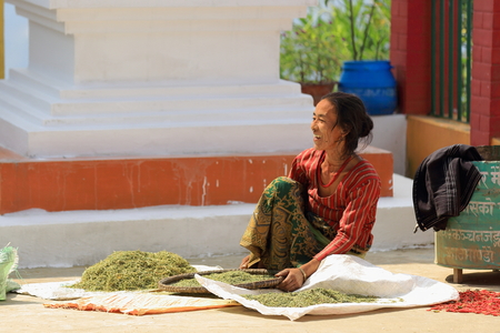 agachado: NAMO BUDA, NEPAL - 16 de octubre: La mujer procesa soja y hierbas en el patio trasero de la parte superior de la AD-1978 VVKhenchen Thrangu Rinpoche fund� Thrangu Tashi Yangtse monasterio budista, el 16 de octubre de 2012. Namo Buda Kavrepalanchok distr Editorial