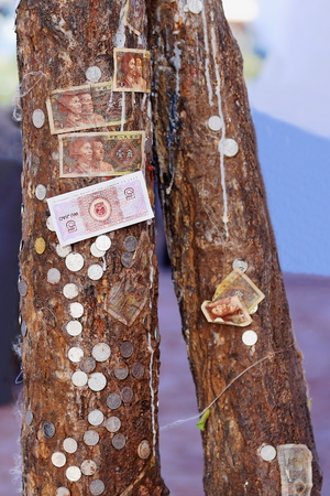 dalai: Tree trunks with chinese money offerings-bank notes and coins glued to their bark on the outside of the Potala with its Potrang Karpo and Marpo-White and Red Palaces on Marpo Ri-Red Hill at 300 ms.over Lhasa city-Tibet.