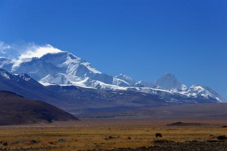 View of the high Himalayas-Mahalangur Himal section. L.toR. Ngozumpa Kang I 7916 ms.Cho Oyu 8201 ms.Phasang Lhamu Chuli or Nagpai Gosum 7352 ms.seen from Tingri-Lawn mountain town at 4348 ms. Tibet 版權商用圖片