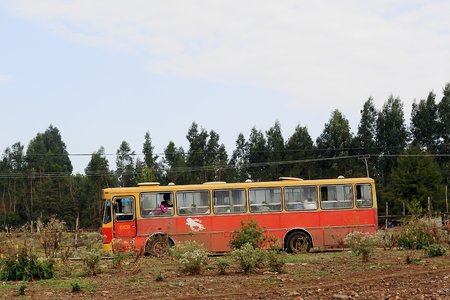 myrtales: ADDIS ABABA, ETHIOPIA-MARCH 24: Red and yellow painted local bus stops on a side way while waiting for passengers on March 24, 2013. Outskirts of Addis Ababa city-Ethiopia.