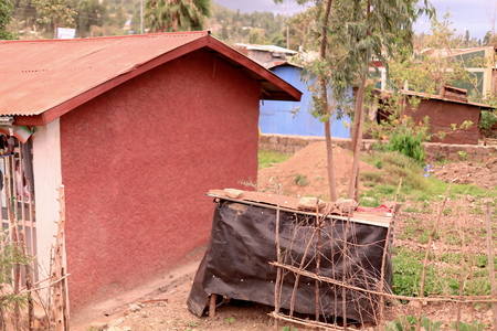 myrtales: Red and blue painted houses with tin roofs set among orchards-area surrounding Bete Gebriel-Saint Gabriel orthodox christian church. Kombolcha town at 1842 ms.-Debub Wollo zone-Amhara region-Ethiopia.