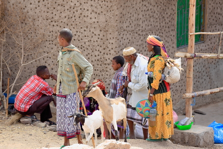 herder: SENBETE, ETHIOPIA-MARCH 24: Family group carries the items purchased in the Sunday market on March 24, 2013. Senbete town at 1235 ms.-Oromia zone-Amhara region-Ethiopia.