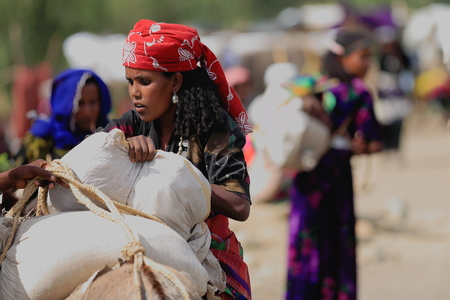 sunday market: SENBETE, ETHIOPIA-MARCH 24: Woman loads her purchases on a dromedary as she leaves the Sunday market where the oromos-amharas-afars meet on March 24, 2013. Senbete-Oromia zone-Amhara region-Ethiopia.