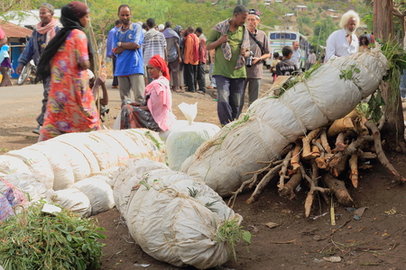 amharic: DEGAN, ETHIOPIA-MARCH 25: Woman takes care of several packs of khat leaves along with some firewood for the local market on March 25, 2013. Debub Wollo zone-Amhara region.