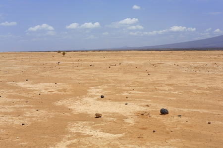barren land: Dry barren land of the Danakil desert-erased all tracks on the way from town to Afrera Dodon-basecamp to the Erta Ale volcano. View to the S.of Hayli Gubbi volcano at 521 ms. Afar region-Ethiopia.