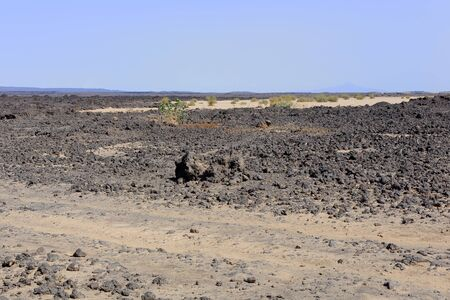 barren land: Volcanic dry barren land of the Danakil desert-tracks almost erased Afrera-way from town to Dodon-basecamp of Erta Ale volcano. View to the SW.of Hayli Gubbi volcano at 521 ms. Afar region-Ethiopia.