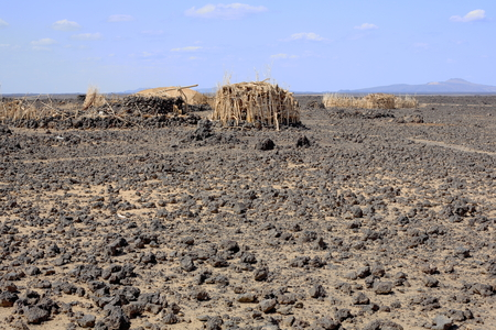 ari: Hut or ari of the Afar people with oval shape made of palm mats-encircled by thorn barricade-on rocky lava ground. Way from Afrera town to Dodon-basecamp of Erta Ale volcano-Danakil desert-Afar region