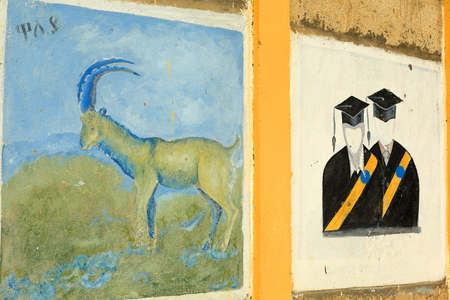 academic dress: BERAHILE, ETHIOPIA-MARCH 29: Pedagogical graffiti on the scholl walls show some local cultural facts to the students on March 29, 2013 in Berahile town on the limits of the Danakil desert. Administrative zone 2-Afar region-Ethiopia.