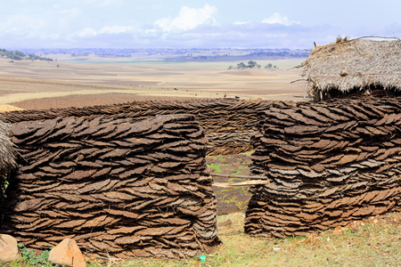 Corral of sundried cow dungs piled together in herringbone shape-boundary of a household in a small hamlet of the Oromo people by the Debre Sina-Addis Ababa route. N.Shewa zone-Oromia region-Ethiopia.