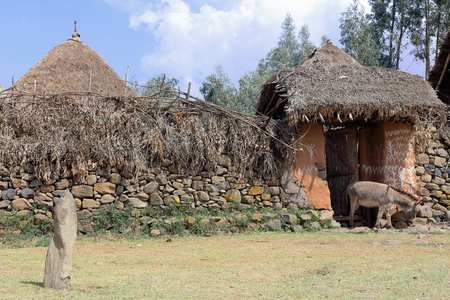 house donkey: Donkey at the gate-stone and scrub walls and thatched roofs of huts in a small walled hamlet of the Oromo people alongside the Debre Sina-Addis Ababa route. North Shewa zone-Oromia region-Ethiopia. Stock Photo