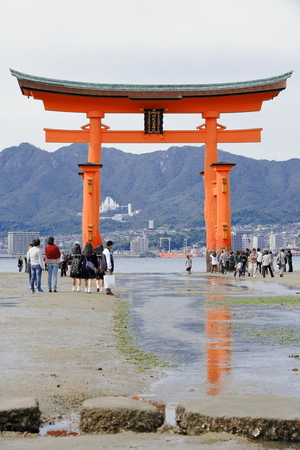 lacquerware: MIYAJIMA, JAPAN-OCTOBER 18: Local tourists visit the 1168 AD first built Great Torii of Itsukushima shrine at low tide walking around and under it on October 18, 2013. Hatsukaichi city-Hiroshima pref.