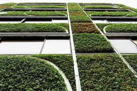 Building in Shiba Koen area-facade designed like a large tree-covered in green lush vegetation-sharp metal frame-headquarters of a florist workshop. Shiba Koen-Minato ward-Tokyo-Honshu island-Japan.