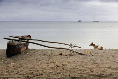 Old dugout fishing rowboat with outrigger stranded on the beach and dog lying on the coarse sand by its side-luxury sailboats on the background anchored in the bay facing Lamen Bay Village in Vanuatu. Foto de archivo