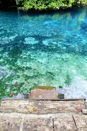Blue holes are natural features that occur when mineral water comes up from limestone ground and this causes the water to be transparent and iridescent blue. Espiritu Santo island-Sanma prov.-Vanuatu.