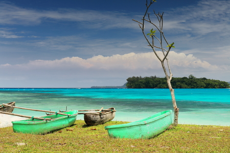 Green painted dugout rowboats with outriggers stranded on the beach beside a lonely small tree with Malet and Dolphin islands on the background. Port Olry-Espiritu Santo island-Sanma province-Vanuatu.