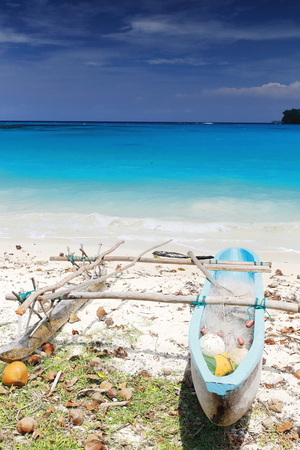 Blue painted dugout rowboat with outrigger and fishing net stranded among fallen coconuts on the sand of the beach facing Dolphin island. Port Olry-Espiritu Santo island-Sanma province-Vanuatu.
