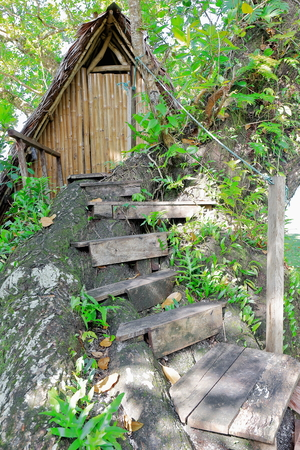 Thatched wooden cabin with bamboo door and wall and wooden stairway built on a big tree on the southernmost extreme of the beach at Port Olry. Espiritu Santo island-Sanma province-Vanuatu.
