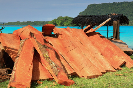 Heap of reddish wood battens piled together beside a thatch roofed shed for the visitors on the southernmost part of the beach facing Malet and Dolphin islands. Port Olry-Espiritu Santo island-Vanuatu