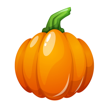 Cartoon pumpkin illustration